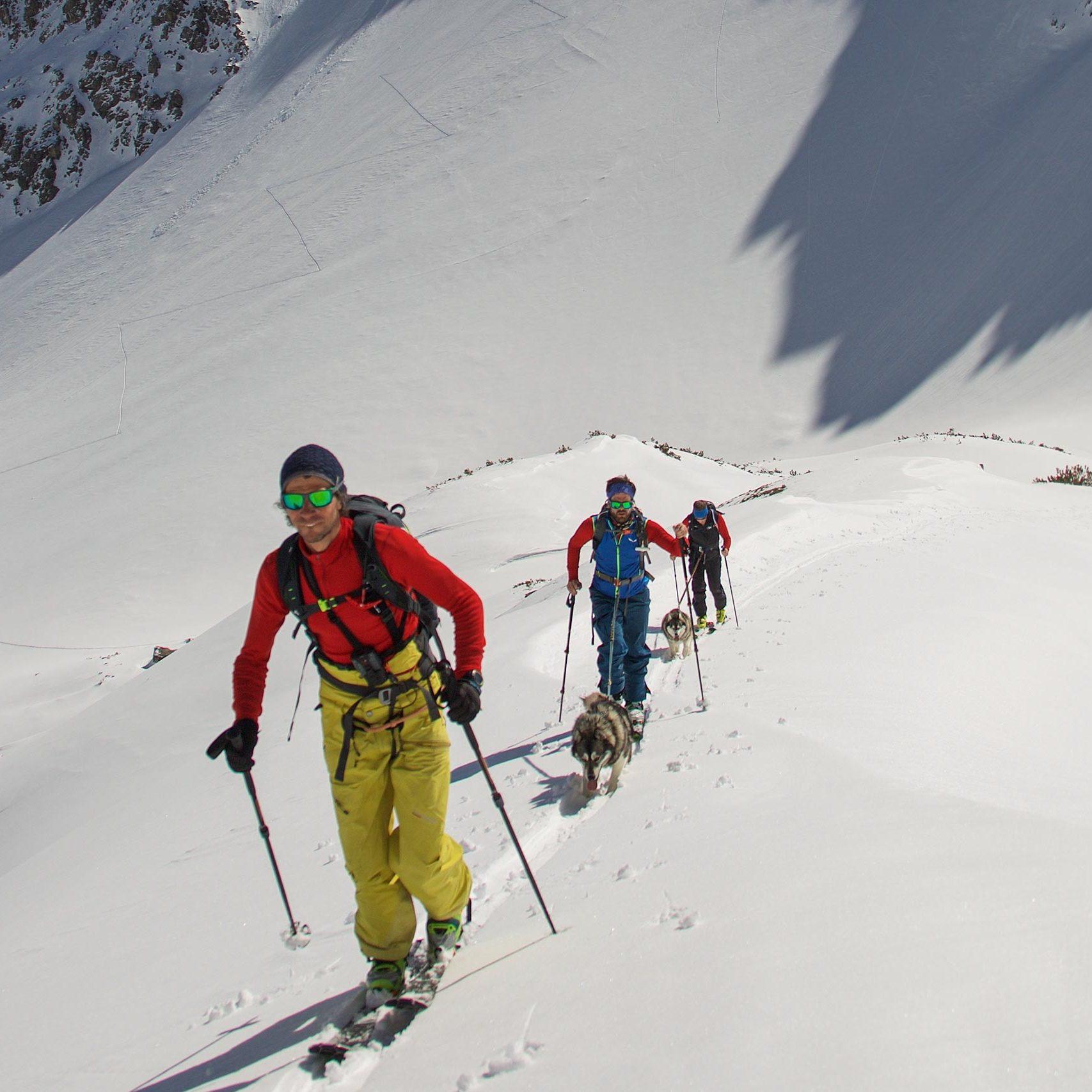 Husky-Skitouring